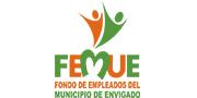 logo_0005_femue